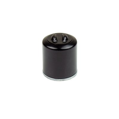 Athena FFP002 Фильтр масляный ADIVA AD/EURO 2/3 (ENG. PIAGGIO) 250 06-08